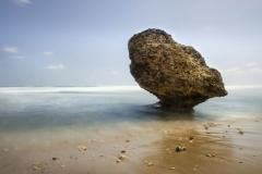 Rocks on Bathsheba beach