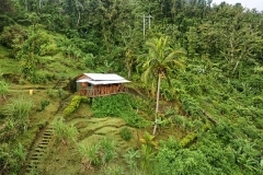 Small cottage in Dominica