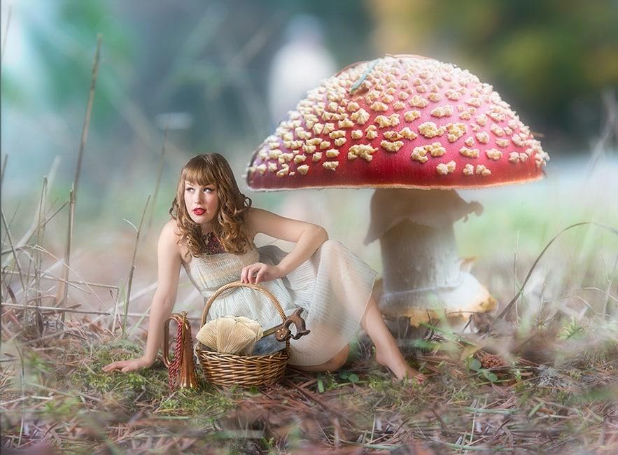 mushroom-picker650